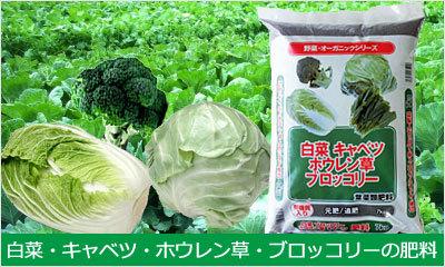 白菜・キャベツ・ホウレン草・ブロッコリーの肥料商品一覧へ
